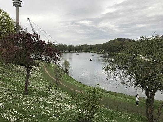 олимпийский парк в апреле усыпан маргаритками