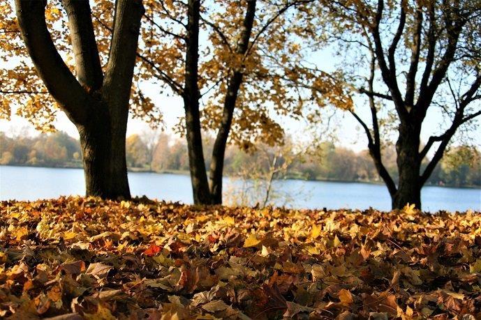 Определить цветотип осень - советы стилистов