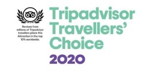 Tripadvisor Logo 2020
